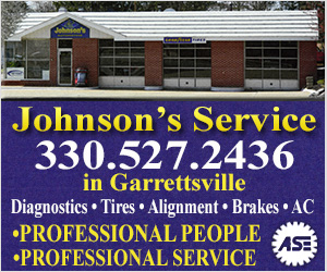 Johnson's Service